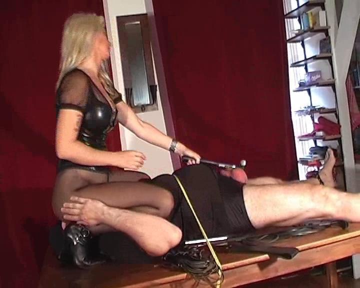 Kelly Kalashnik In Scene: WORSHIP MY PANTYHOSE WHILE I DESTROY YOUR NUTS - FACESITTING-QUEEN - SD/576p/WMV