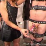 Mistress Anna Regent In Scene: Suspended For CBT – THEENGLISHMANSION – SD/480p/WMV