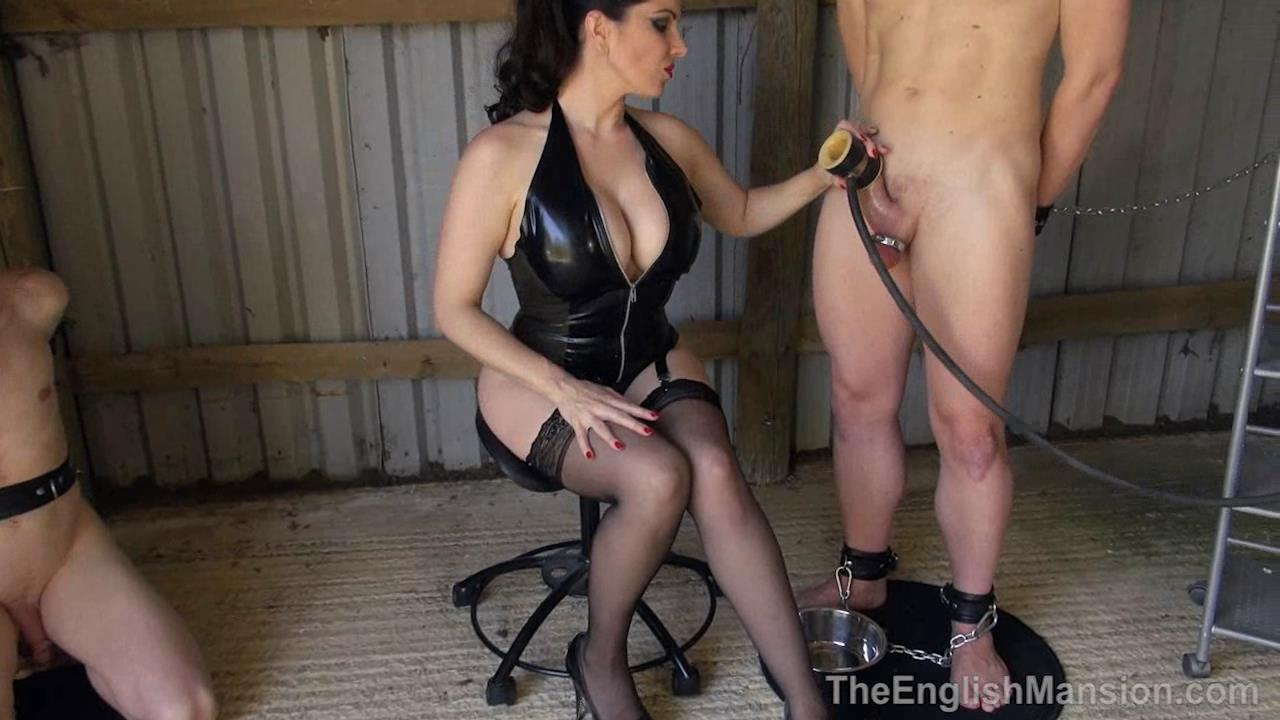 Domina Alexandra Snow In Scene: Fresh Meat To Milk - THEENGLISHMANSION - HD/720p/WMV
