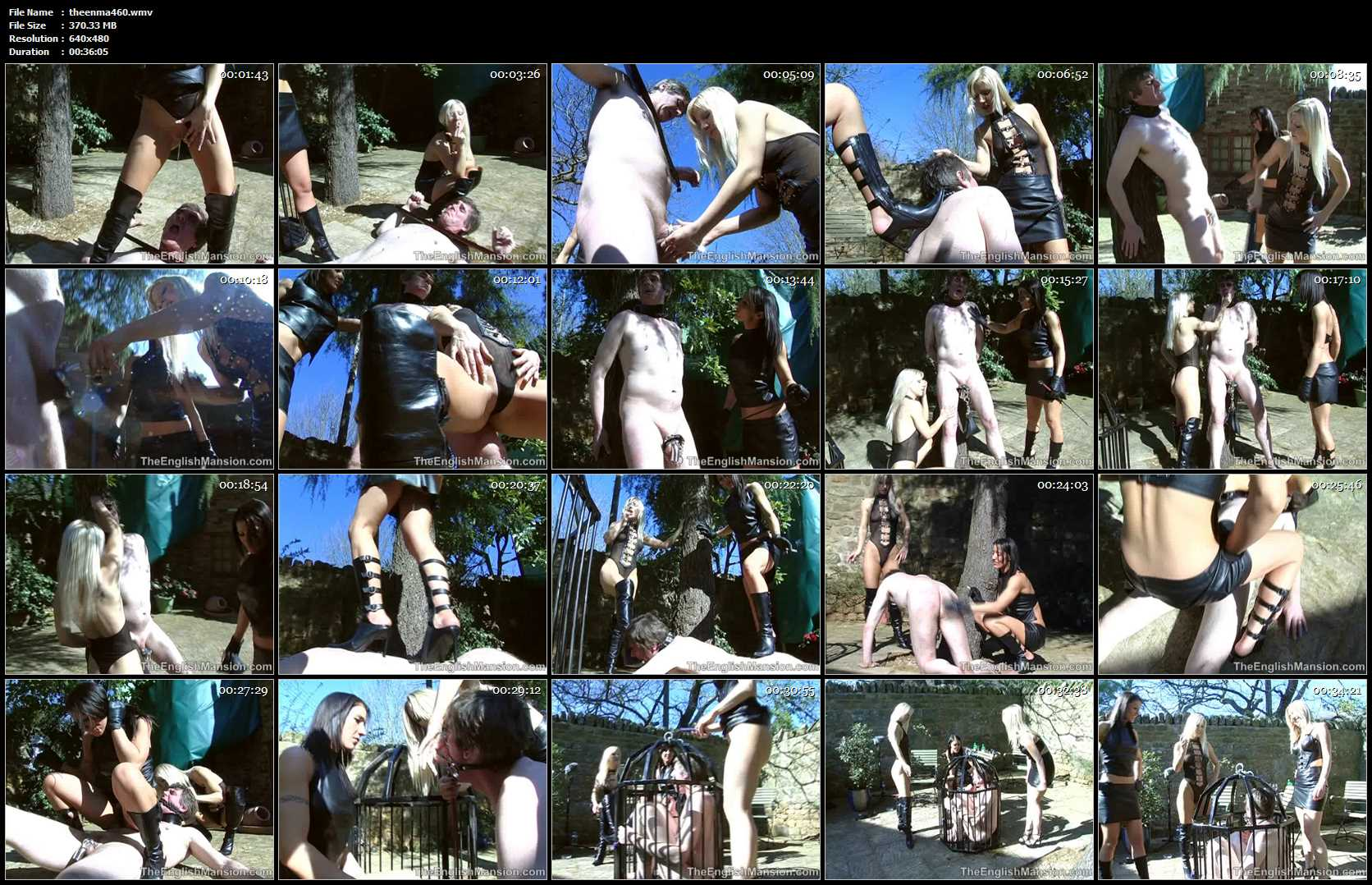 Mistress Sidonia, Mistress Vixen, Princess Anuska In Scene: The Leather Bitches - THEENGLISHMANSION - SD/480p/WMV