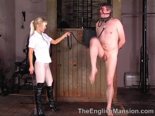 Mistress Vixen In Scene: Vixen's Ponyboy - THEENGLISHMANSION - SD/480p/WMV
