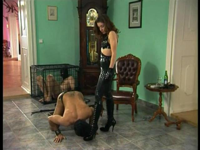 BOOTLICKER?S HARD TRAINING - OWK / OWK-CINEMA - SD/480p/MP4