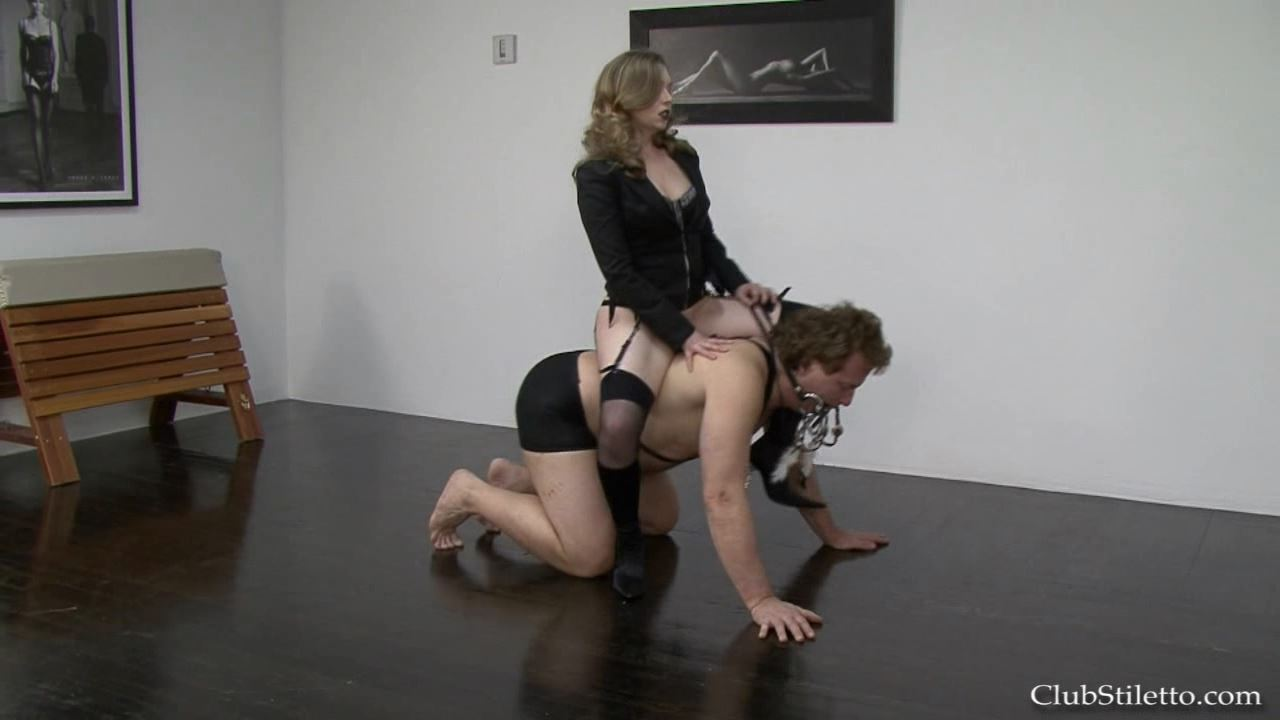 Mistress T In Scene: A Fucking Good Ride - CLUBSTILETTO - HD/720p/MP4