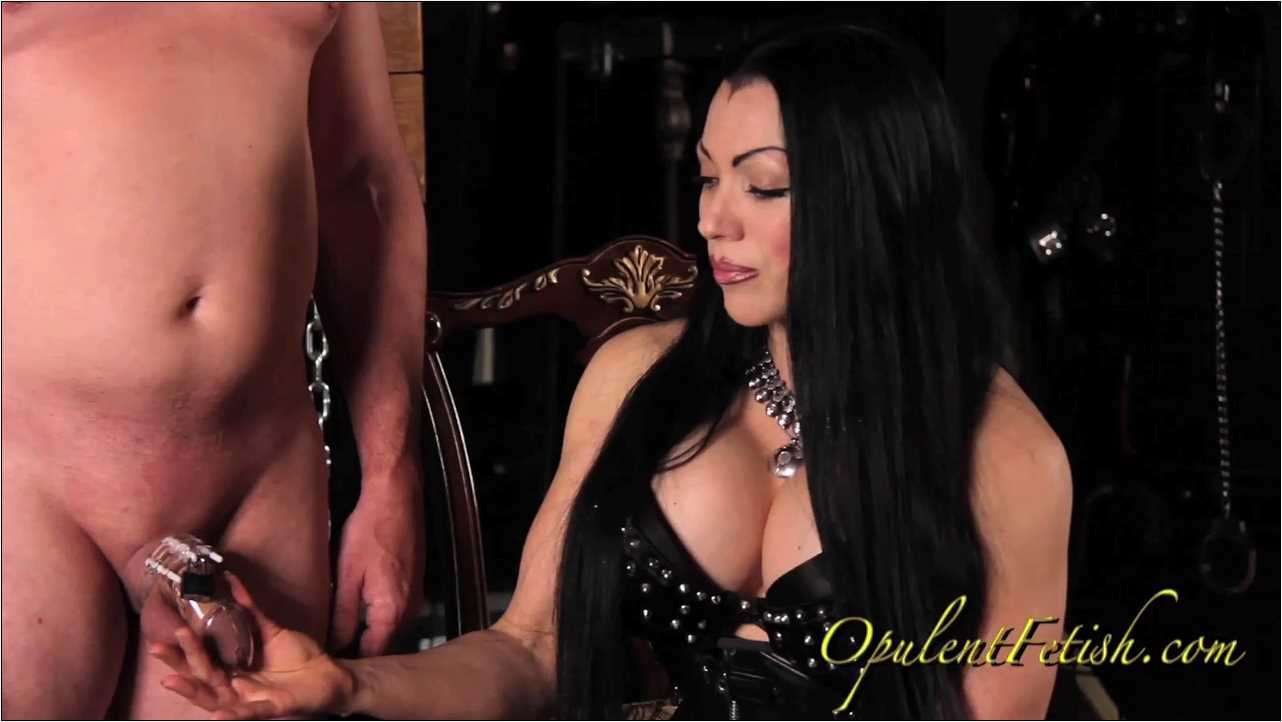 Goddess Cheyenne In Scene: Need for Chastity - OPULENTFETISH / GODDESSCHEYENNE - HD/720p/MP4