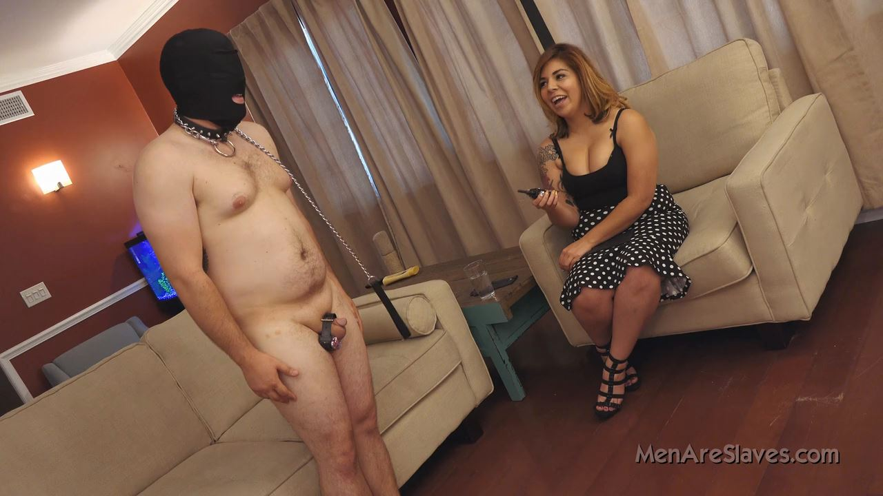 Goddess Daisy In Scene: I'm Scared Of Your New Toy - MENARESLAVES - HD/720p/MP4