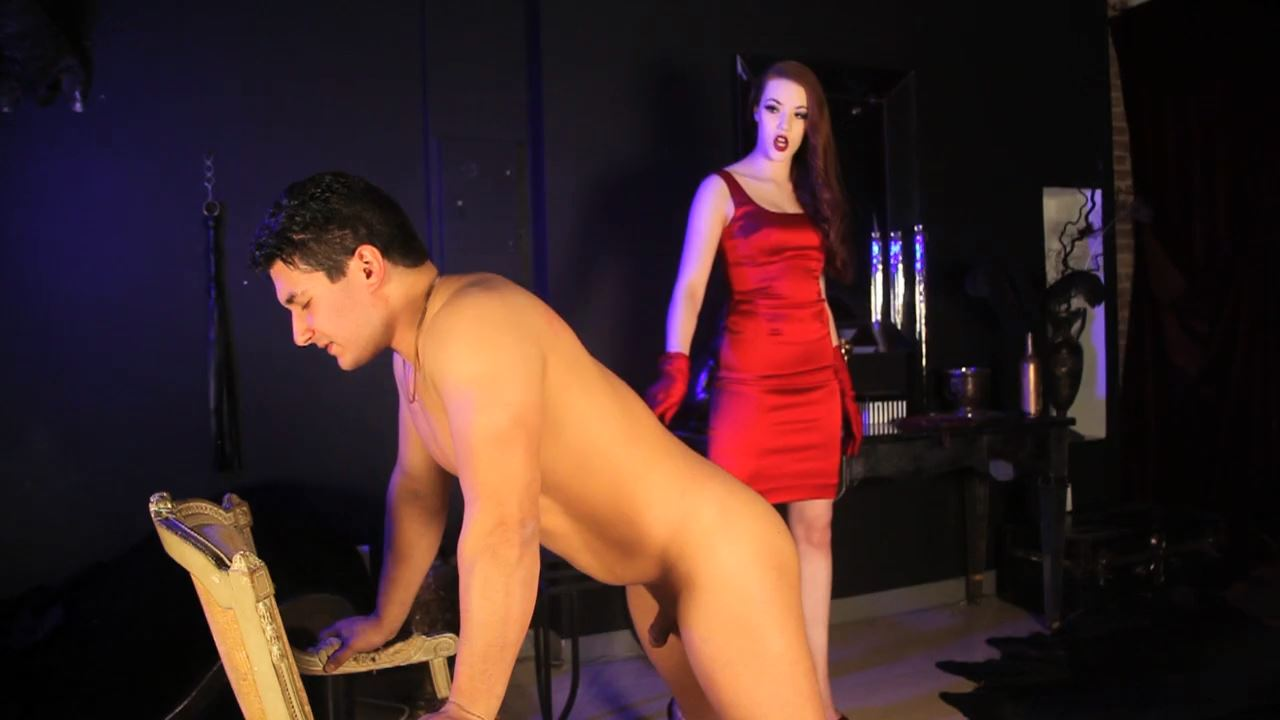 Mistress Shea In Scene: Domination In A Red Dress - DEADLYDOMMES - HD/720p/MP4