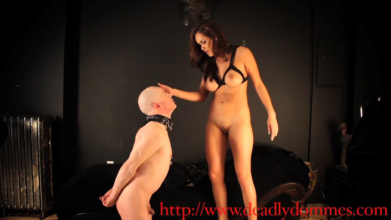Mistress Daisy Marie In Scene: Slapped Silly - DEADLYDOMMES - HD/720p/MP4