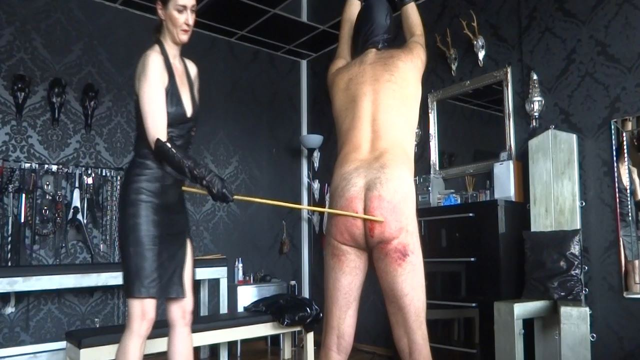 Lady Victoria Valente In Scene: Caning my new slave - Part 5 Caningslave - CLIPS4SALE / LADYVICTORIAVALENTE - HD/720p/MP4