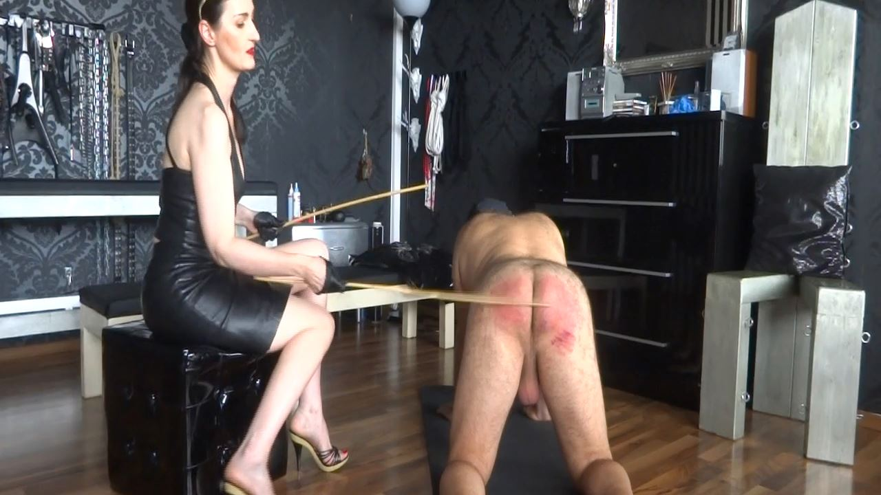 Lady Victoria Valente In Scene: Caning my new slave - Part 3 Caningslave - CLIPS4SALE / LADYVICTORIAVALENTE - HD/720p/MP4