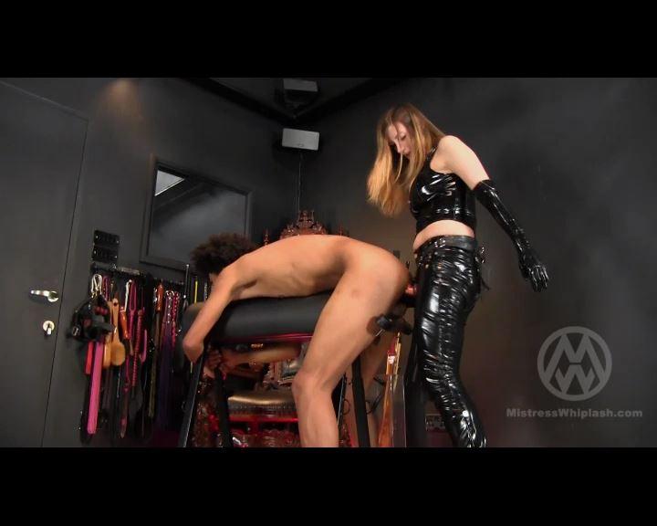 Mistress Nikki Whiplash In Scene: 21 inches in his ass - CLIPS4SALE / MISTRESS NIKKI WHIPLASH / MISTRESS WHIPLASH - SD/576p/MP4