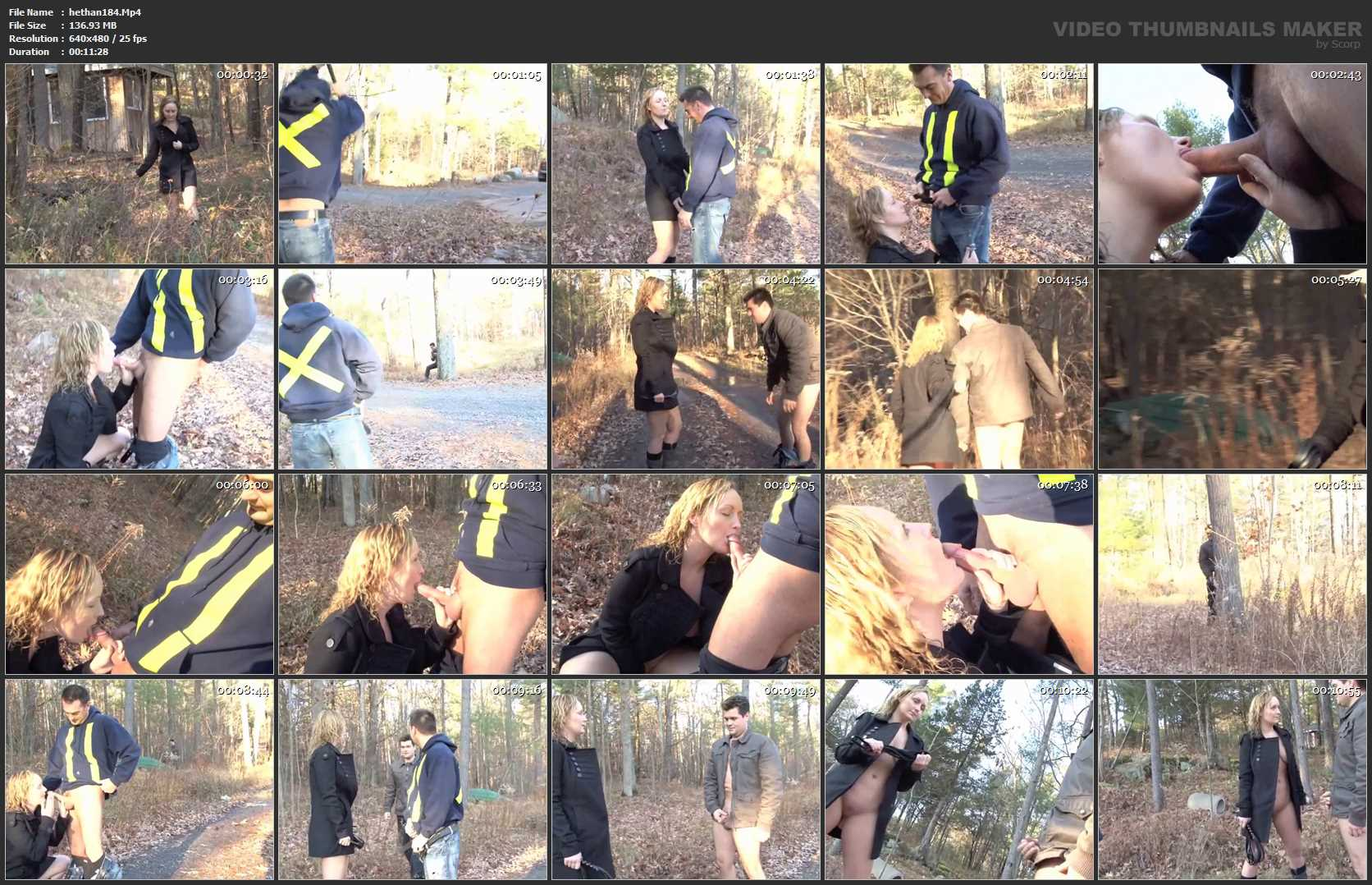 Woods Peeper - HETEROHANDJOBS - SD/480p/MP4