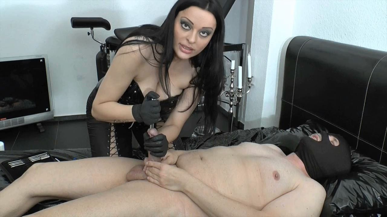 Mistress Lady Latoria In Scene: XXL dilator & finger in the tail - CLIPS4SALE / LADY LATORIAS WORLD / HERRIN-LATORIA - HD/720p/MP4
