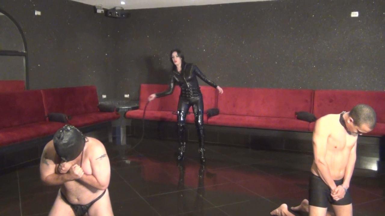 Krystall In Scene: Bullwhipped By A Merciless Catwoman - LATINBEAUTIESINHIGHHEELS - HD/720p/MP4