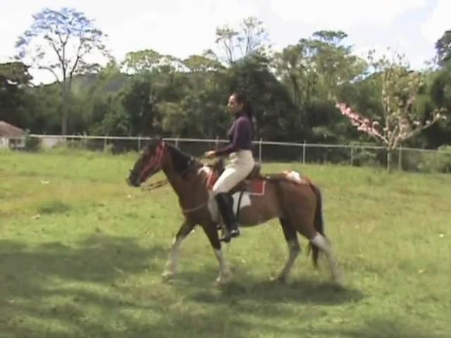 Krystall In Scene: On Horseback Riding - LATINBEAUTIESINHIGHHEELS - SD/480p/MP4