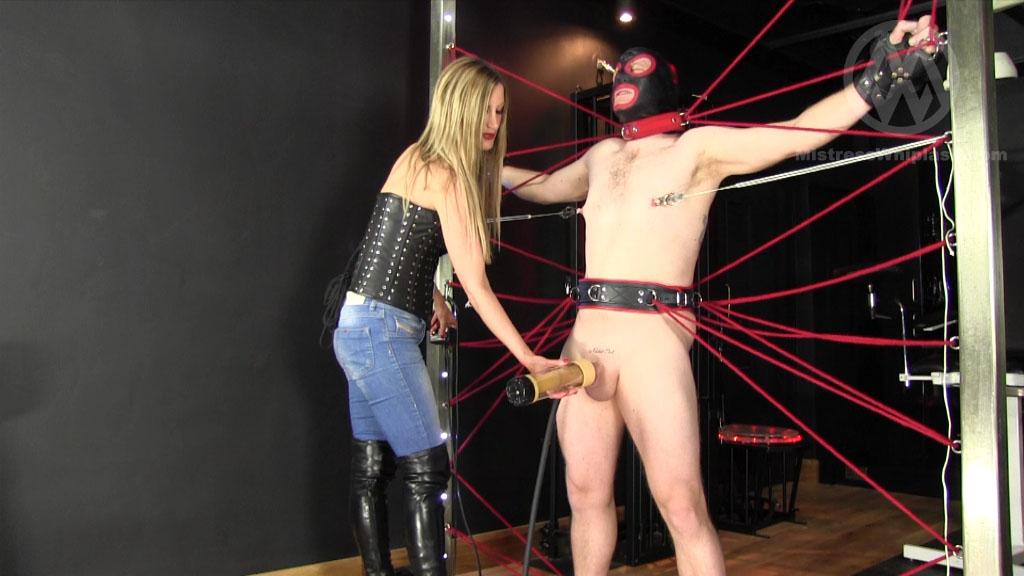 Mistress Nikki Whiplash In Scene: Milked in the Web - CLIPS4SALE / MISTRESS NIKKI WHIPLASH / MISTRESS WHIPLASH - SD/576p/MP4