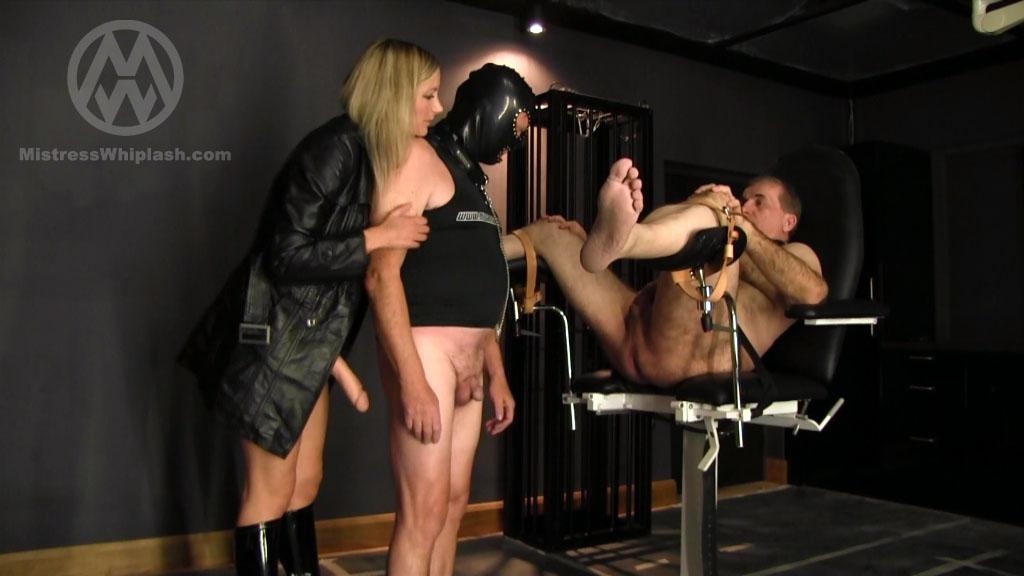 Mistress Nikki Whiplash In Scene: Made To Lick Asshole - CLIPS4SALE / MISTRESS NIKKI WHIPLASH / MISTRESS WHIPLASH - SD/576p/MP4