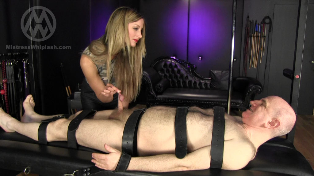 Mistress Nikki Whiplash In Scene: Chastity Drone's Bi-monthly Milking - CLIPS4SALE / MISTRESS NIKKI WHIPLASH / MISTRESS WHIPLASH - SD/576p/MP4