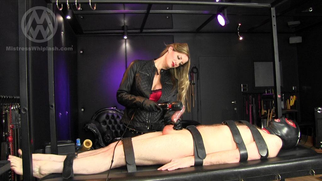 Mistress Nikki Whiplash In Scene: Milked Then Fed - CLIPS4SALE / MISTRESS NIKKI WHIPLASH / MISTRESS WHIPLASH - SD/576p/MP4
