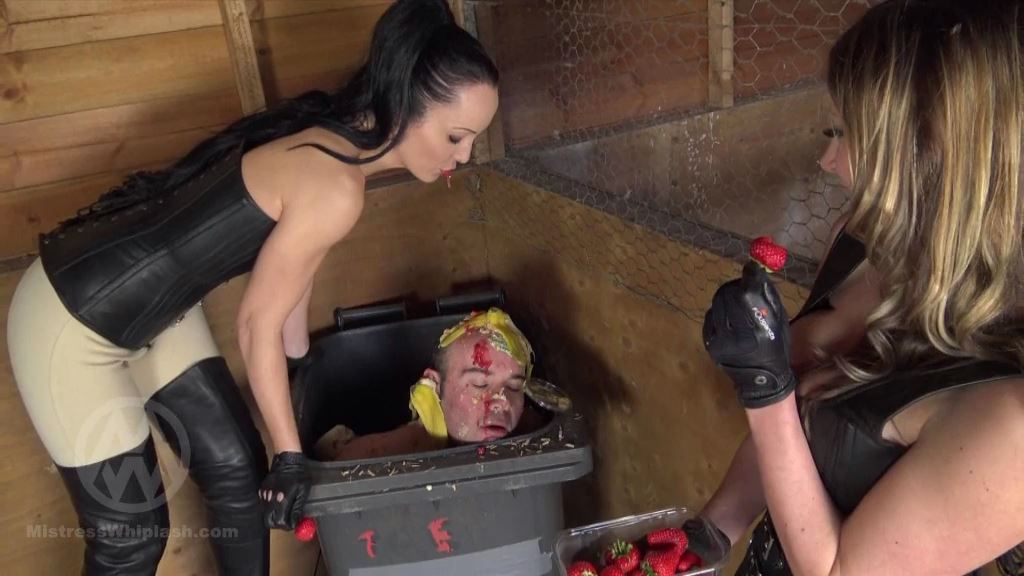 Mistress Nikki Whiplash, Fetish Liza In Scene: Human Dustbin Humiliation - CLIPS4SALE / MISTRESS NIKKI WHIPLASH / MISTRESS WHIPLASH - SD/576p/MP4