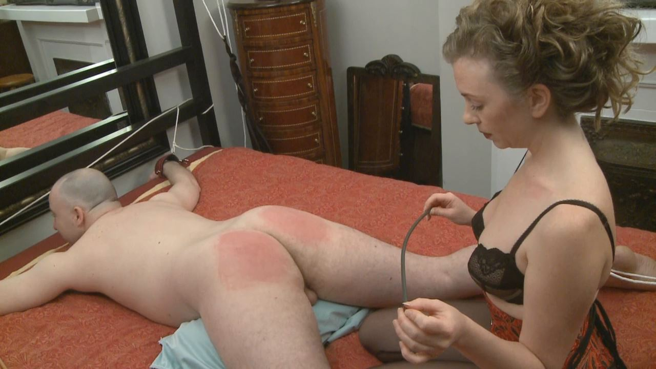 Mistress T In Scene: Can The Rookie 536 - MISTRESST - HD/720p/MP4