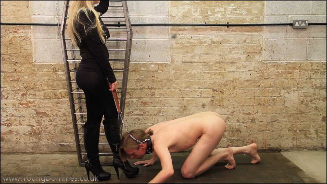 Tonis Grovelling Sissy - YOUNGDOMMES - HD/720p/MP4