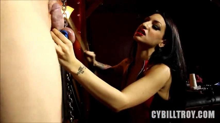 Cybill Troy In Scene: DAMAGED DICK - CYBILLTROY - SD/480p/MP4