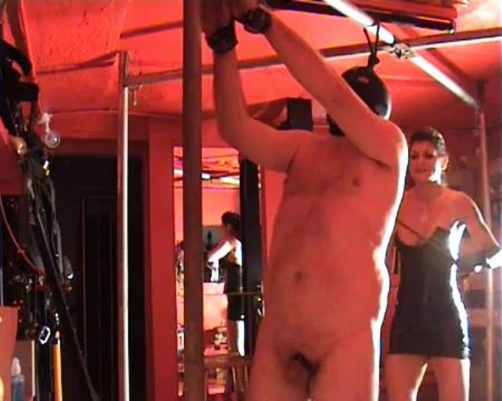 Mistress Dometria In Scene: Bullwhip Lashes - MISTRESS DOMETRIA BDSM CLIPS / BRIGHTONDUNGEON - LQ/360p/MP4