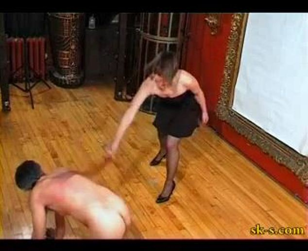 cat Whipping - SPIKEYSTEP VIDEO PRODUCTIONS - LQ/288p/MP4