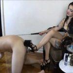 Mistress Cybill Troy In Scene: ASS FUCKED WITH AN 8-INCH HEEL – CYBILL TROY`S DTLA DOMINAS � SD/480p/MP4
