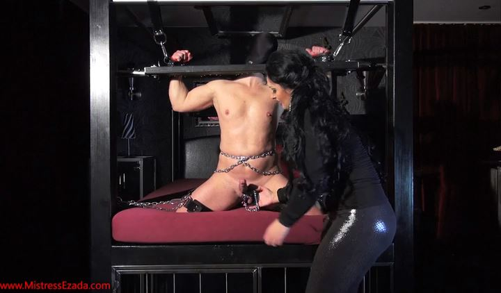Mistress Ezada Sinn In Scene: Cbt For The Helpless Slave - MISTRESSEZADA - SD/422p/MP4