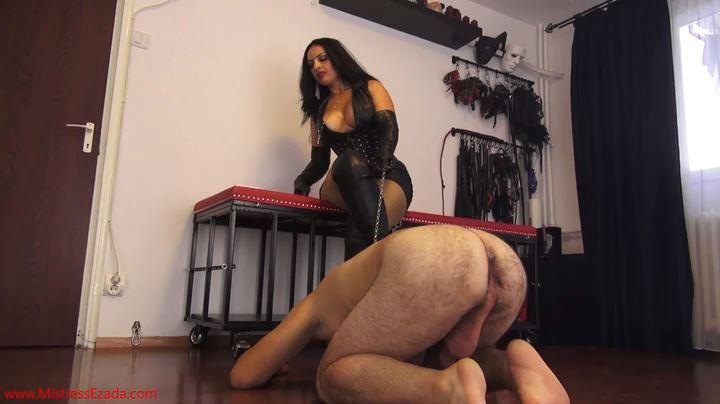 Mistress Ezada Sinn In Scene: Human Mop For Mistress Ezada - MISTRESSEZADA - SD/404p/MP4