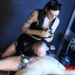 Mistress Miranda Mayfai In Scene: Pain Tolerance – CYBILL TROY`S DTLA DOMINAS / CYBILLTROY – SD/480p/MP4