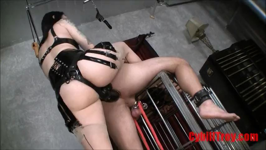 Mistress Cybill Troy In Scene: Hung Like a Horse - CYBILL TROY`S DTLA DOMINAS / CYBILLTROY - SD/480p/MP4