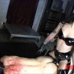 Mistress Cybill Troy In Scene: Cybill vs. the Fan-Boy – CYBILL TROY`S DTLA DOMINAS / CYBILLTROY – SD/480p/MP4