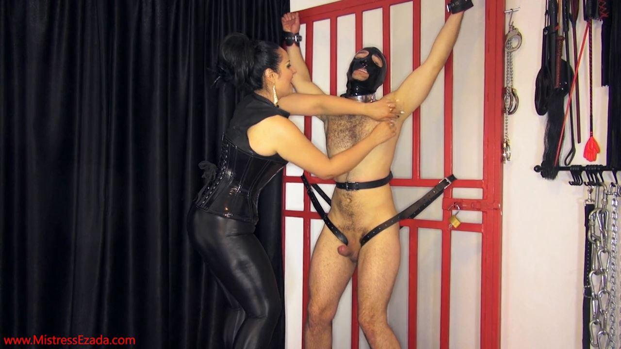 Mistresses Ezada Sinn In Scene: Tickling Vs. Teasing - MISTRESS EZADA SINN / MISTRESSEZADA - HD/720p/MP4