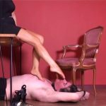 Ms Vixen Part 5 – WOMANWORSHIP – SD/480p/MP4