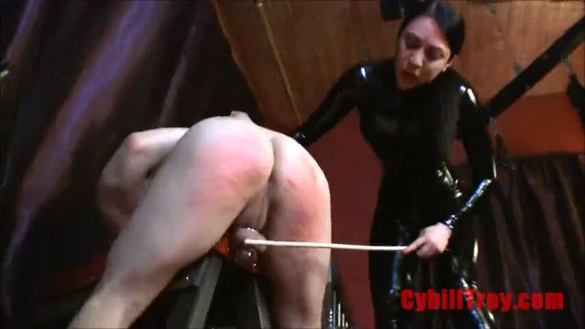 Mistress Cybill Troy In Scene: Scheduled Beatings - CYBILL TROY`S DTLA DOMINAS / CYBILLTROY - SD/480p/MP4