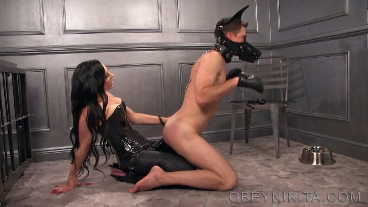 Mistress Nikita In Scene: Puppys Big Bone - OBEYNIKITA - HD/720p/MP4