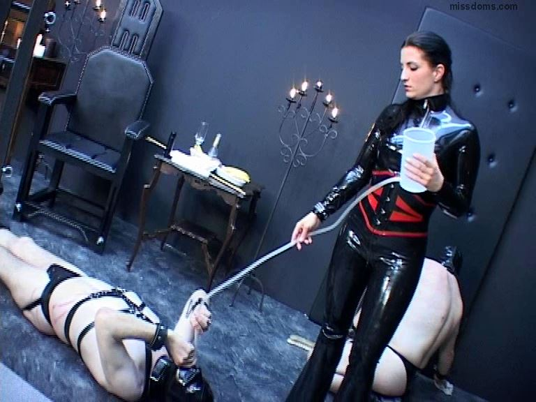 Schlagende Girls Update 097 - SCHLAGENDEGIRLS / MISSDOMS - SD/576p/WMV