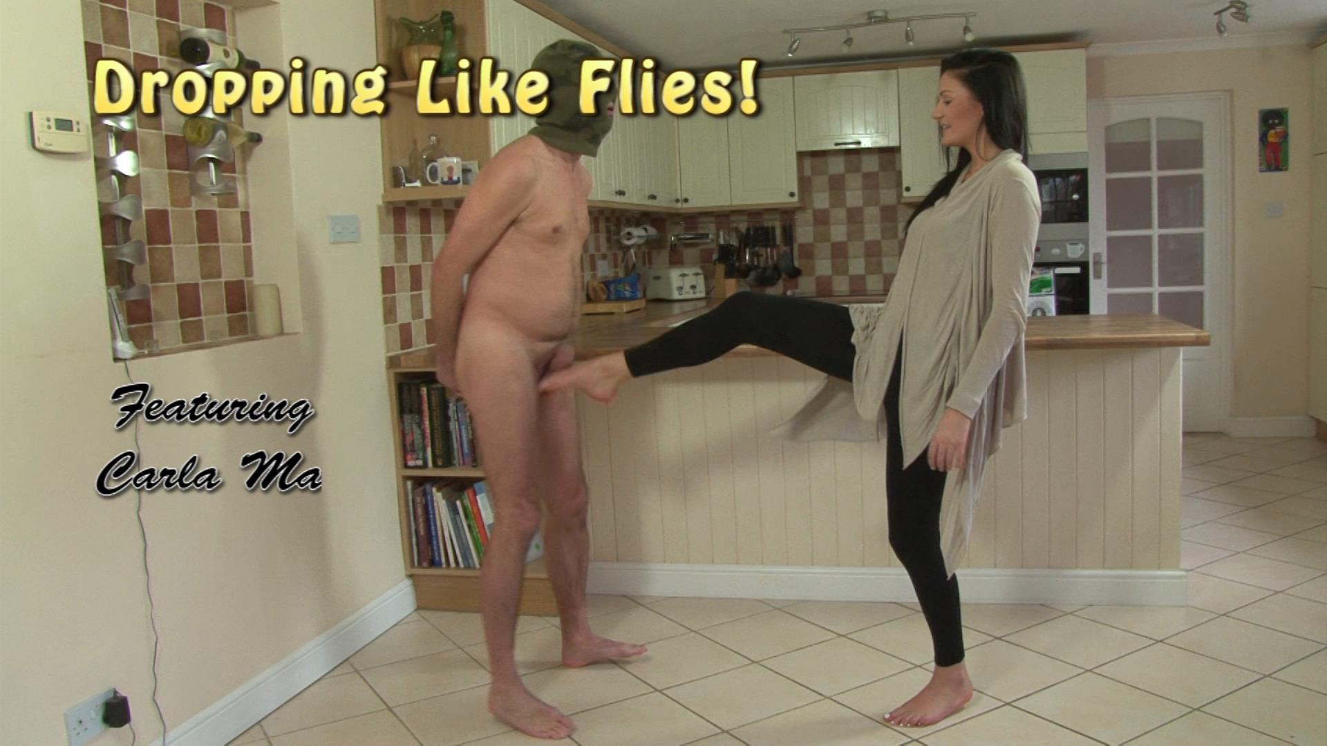Carla Mai In Scene: Dropping Like Flies - KINKYKICKS - FULL HD/1080p/MP4
