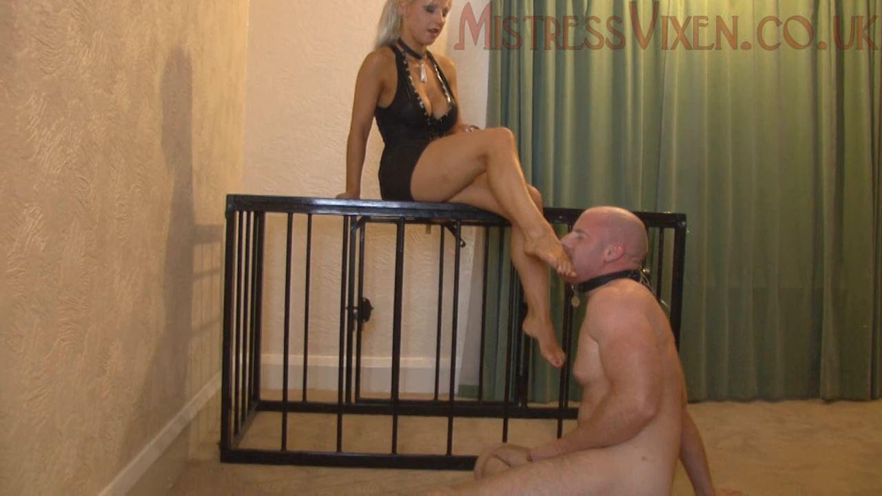 Mistress Vixen In Scene: Dungeon Dreams 5 - MISTRESSVIXEN - HD/720p/MP4