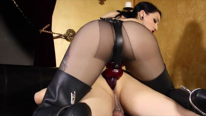 Mistress Cybill Troy In Scene: Anal Whore: Back In The Saddle - CYBILL TROY'S DTLA DOMINAS / CYBILLTROY - SD/406p/MP4
