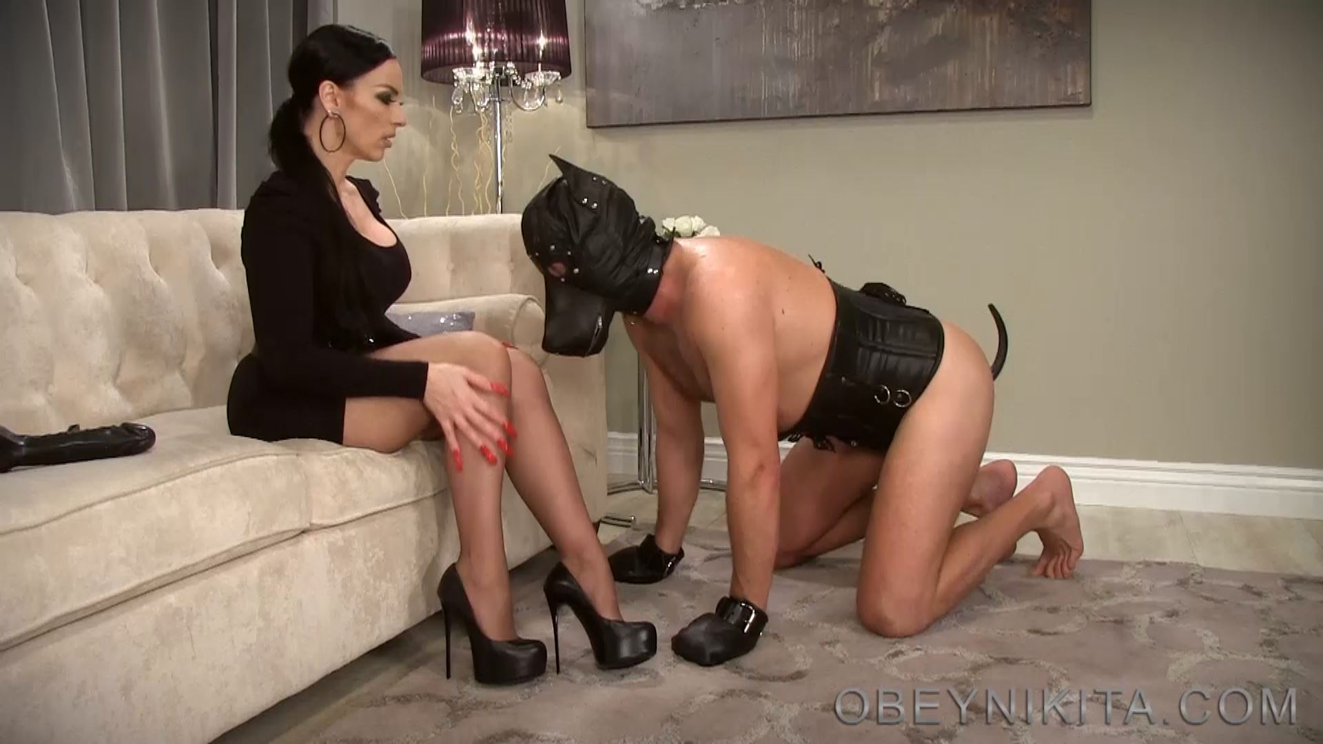 THIRSTY PUPPY. FEATURING: MISTRESS NIKITA - OBEYNIKITA - FULL HD/1080p/MP4