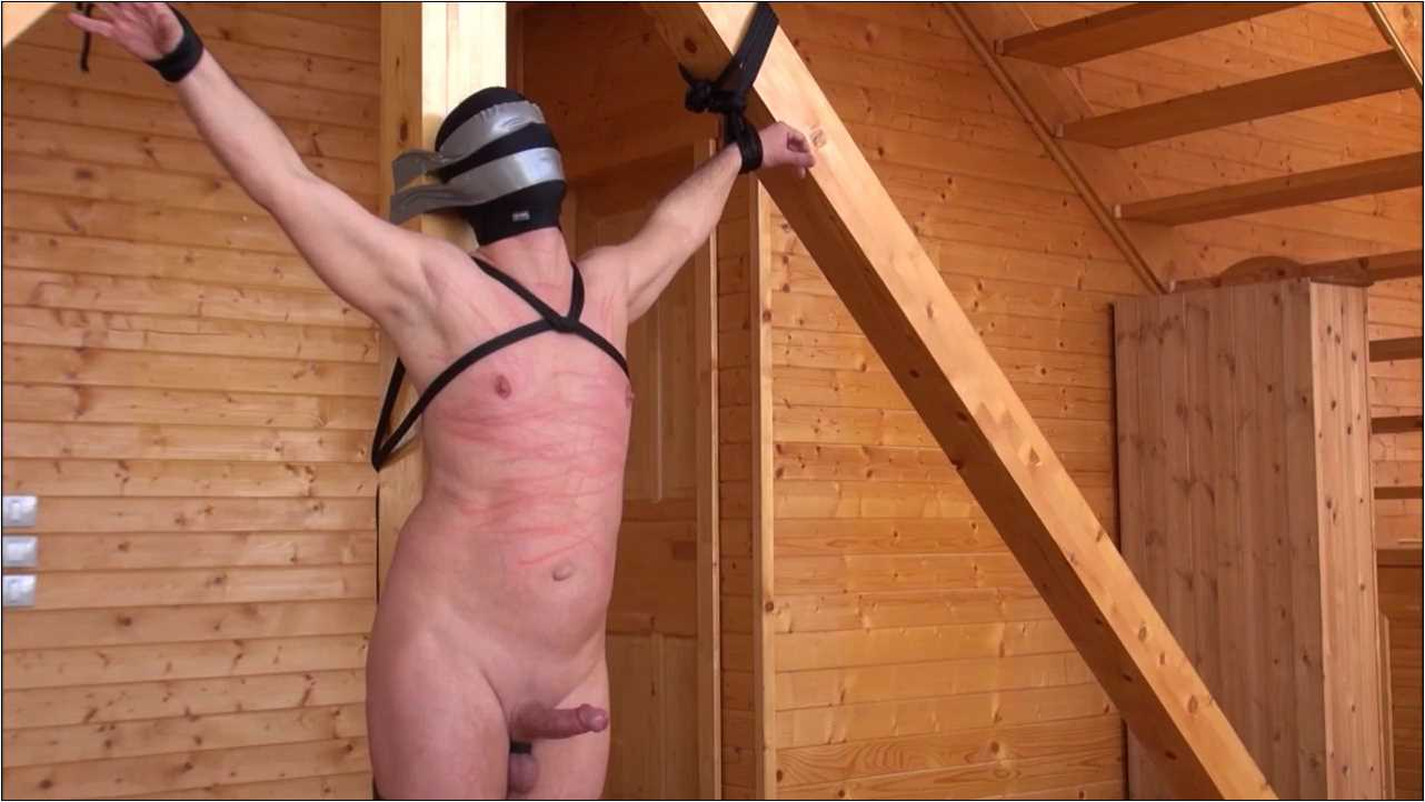 genital single tail whip punishments - BRUTAL CBT - HD/720p/MP4