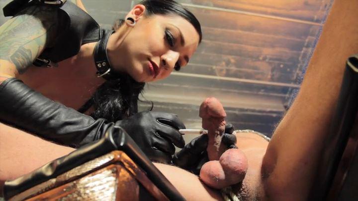Mistress Cybill Troy In Scene: Cybill's Burning Lovve - CYBILL TROY'S DTLA DOMINAS / CYBILLTROY - SD/406p/MP4