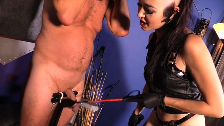 Mistress Cybill Troy In Scene: Rubber Gimp Smother - CYBILL TROY'S DTLA DOMINAS / CYBILLTROY - SD/406p/MP4