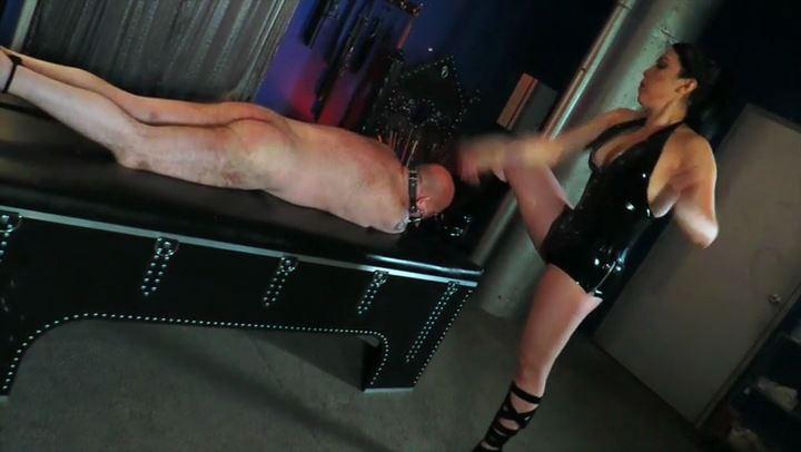 Mistress Lydia Supremacy In Scene: Whipped for Her Pleasure - CYBILL TROY'S DTLA DOMINAS / CYBILLTROY - SD/406p/MP4