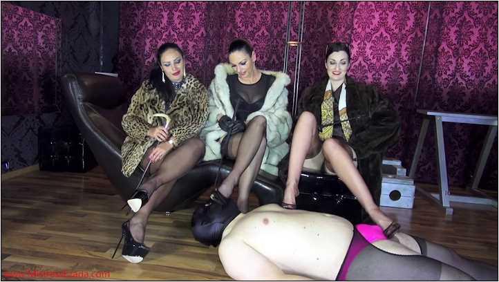 Worshiping three fur Goddesses - MISTRESS EZADA SINN - SD/406p/MP4