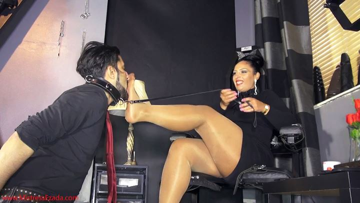 Mistress Ezada In Scene: Stray pet adoption - MISTRESS EZADA SINN - SD/406p/MP4