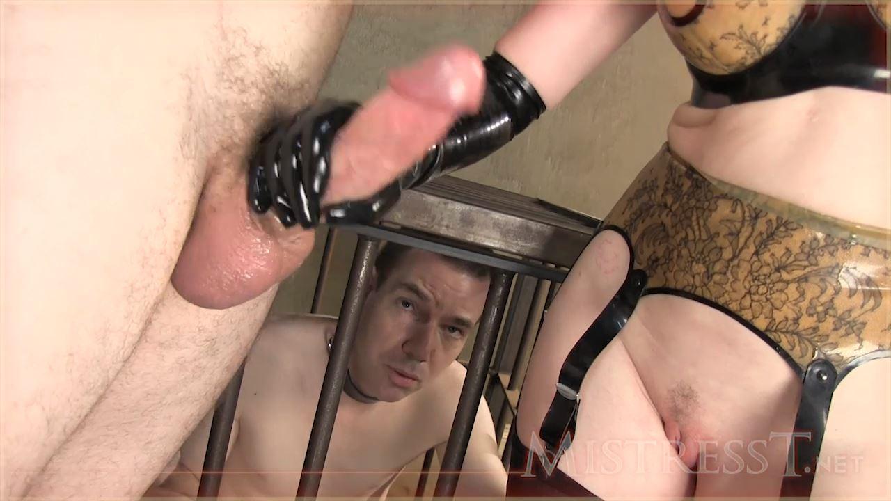 Mistress T In Scene: Sex Slave & Cuckold Slave - MISTRESST - HD/720p/MP4